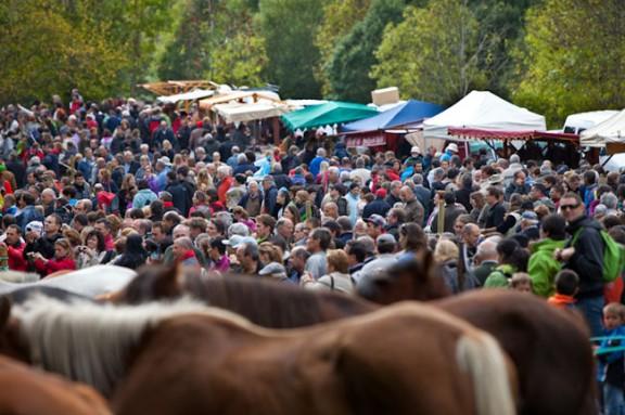 Vora 7.000 persones a la Tria de Mulats d' Espinavell