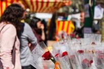 Vés a: La «Freedom» serà de nou la rosa més venuda per Sant Jordi